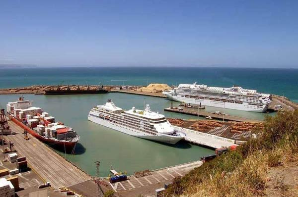 Cruises tour at Napier,places to visit in New Zealand