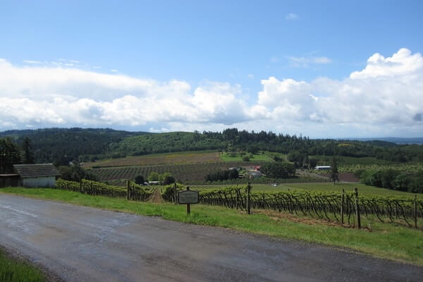 Willamette Valley, great day trip from Portland