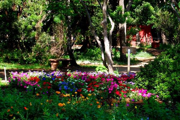 Zilker Botanical garden; Best Day Trips From Austin