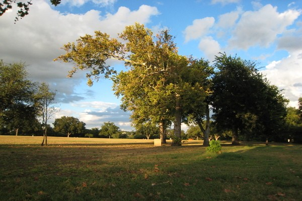 Zilker Park; Best Day Trips From Austin