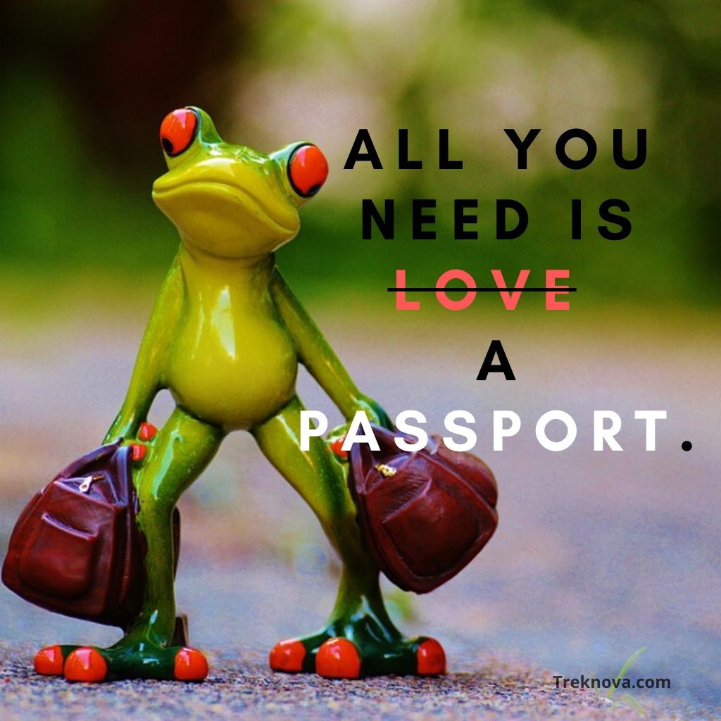 All you need is love a passport., Funny Travel Quotes