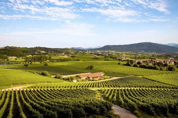 Franciacorta;Day trips from Milan
