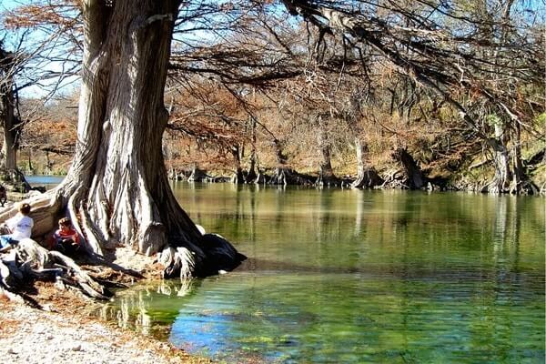 Guadalupe River State Park, day trips from San Antonio