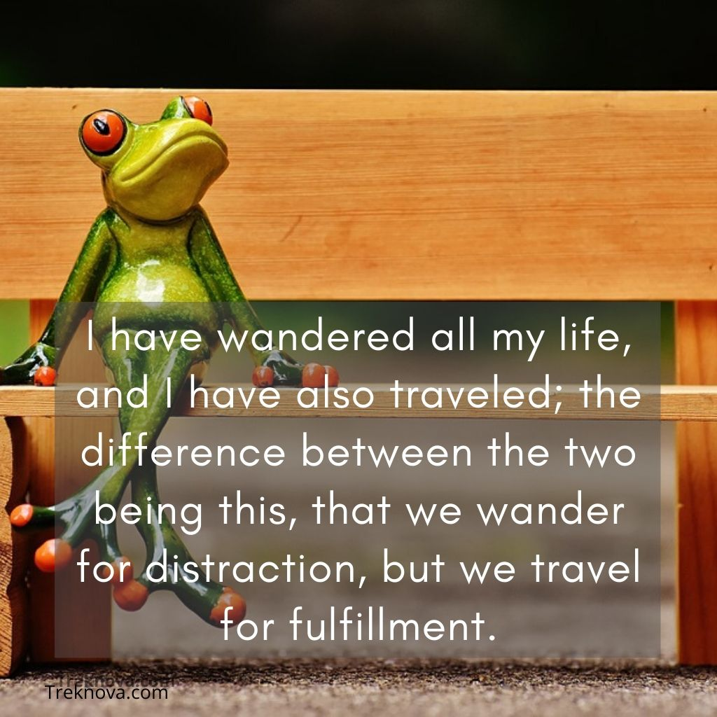 I have wandered all my life, and I have also traveled; the difference between the two being this, that we wander for distraction, but we travel for fulfillment., Funny Travel Quotes funny quotes about travelling with friends