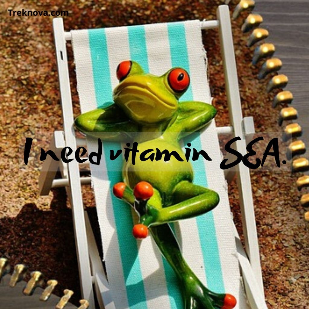 I need vitamin SEA., Funny Travel Quotes; funny quotes about travelling with friends
