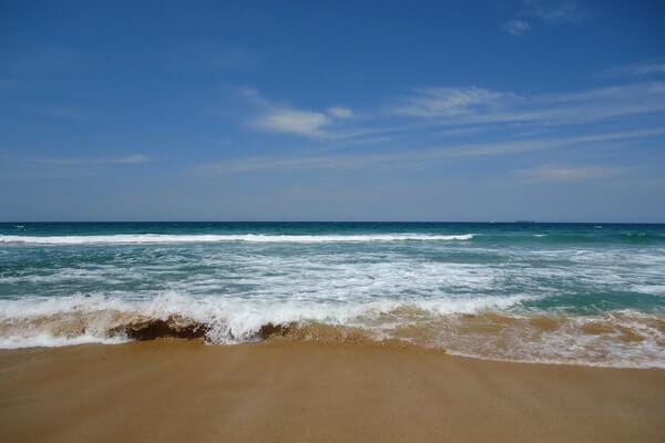 Palm Beach, Sydney Vacation
