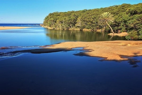 Royal National Park, best day trips from Sydney
