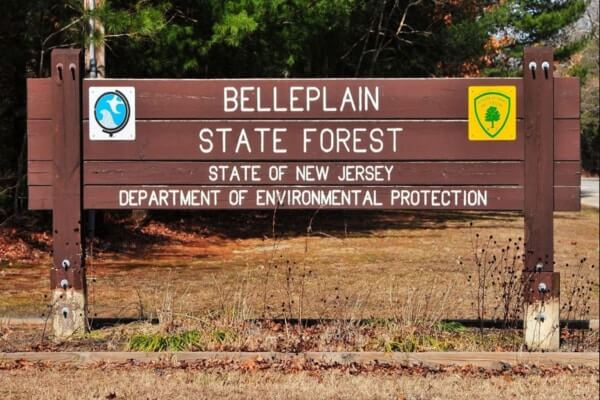 belleplain state forest; best day trips from philadelphia