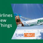 Frontier Airlines Flight Review & Guide (Things To Know)