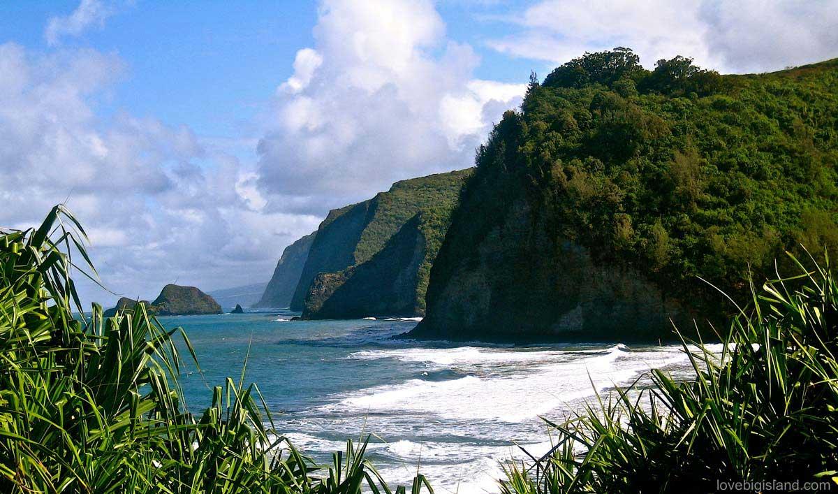 Things to Do in Waimea Hawaii