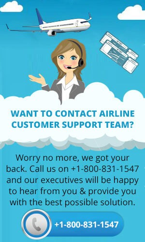 Contact Airline Customer Support Team
