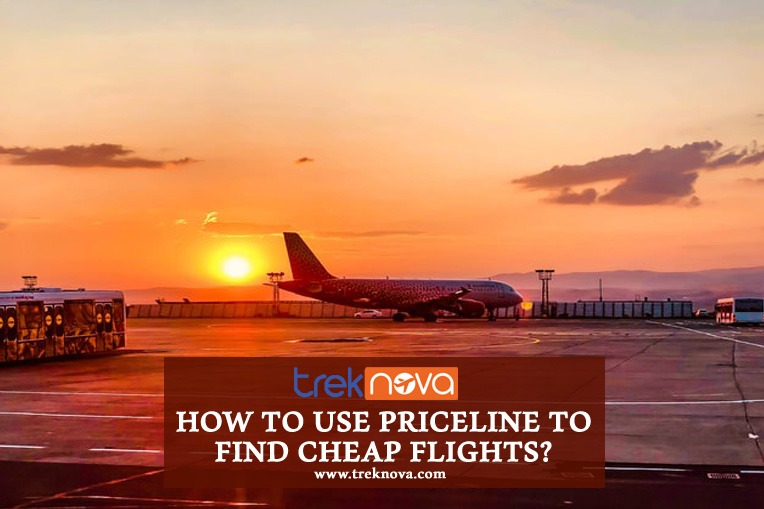 How to Use Priceline to Find Cheap Flights